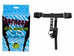 Plug harness w/C-ring